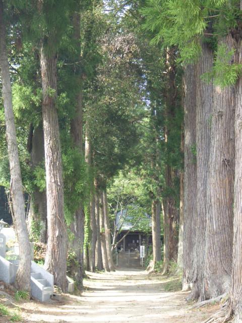 渋滞なしでプチ旅行気分を味わいたい!わがまま旅行記「ご近所寺院めぐり編②」城里町:徳蔵寺