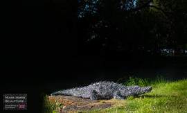 5.5ft Croc from steel wire galvanised_