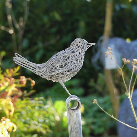 Black bird on a garden fork close up.JPG