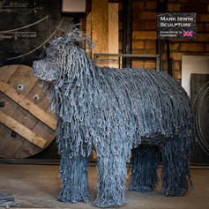 Hungarian Sheep Dog