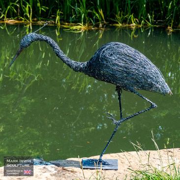 Heron by Pocklington Canal_