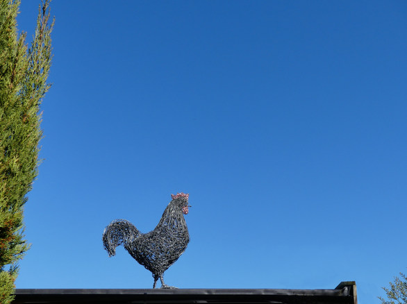 Cockerel on roof.jpg