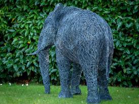 Wire elephant Sculpture