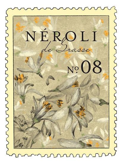 08. Nerolí de Grasse:         nerolí, vetiver, limón amarillo, clementina, musgo