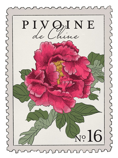 16. Pivoine de Chine:                     peonia rosada, sándalo, flor de cerezo