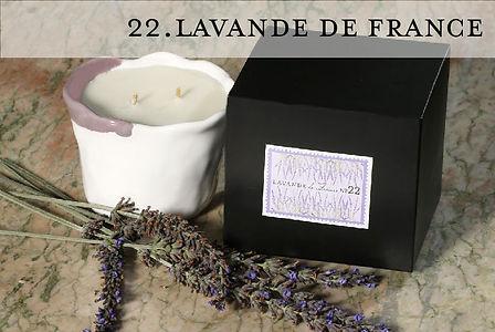 Lavande Française