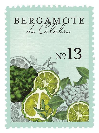13. Bergamote de Calabre:     bergamota, cedro de Virginia, limón, naranja, oud