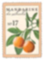 larome-mandarine.jpg