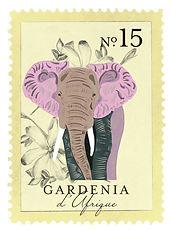 larome-gardenia.jpg