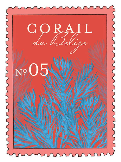 05. Corail de Belize:         loto, jasmín, algas marinas, musk