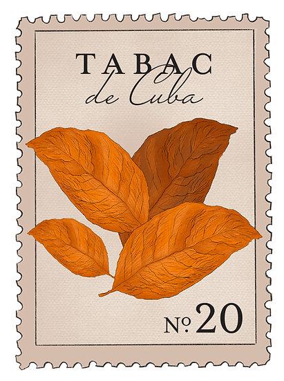 20. Tabac de Cuba: hojas frescas de tabaco, sándalo, pachulí, musk, clavo