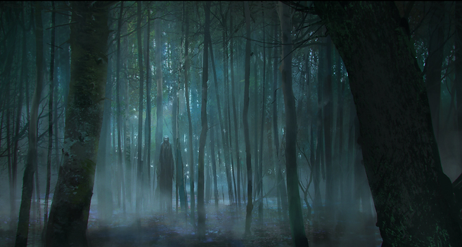 1_1_forest_not_ok.png
