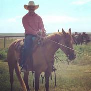 Dustin Sipolla - rancher