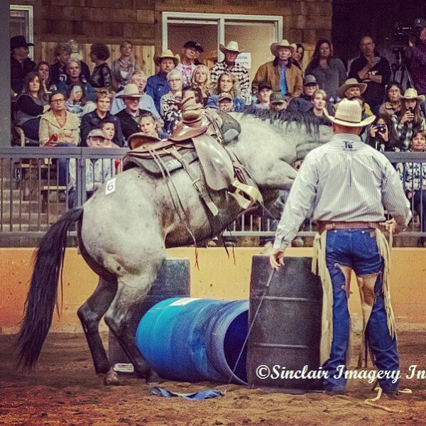 Horsemanship Skills