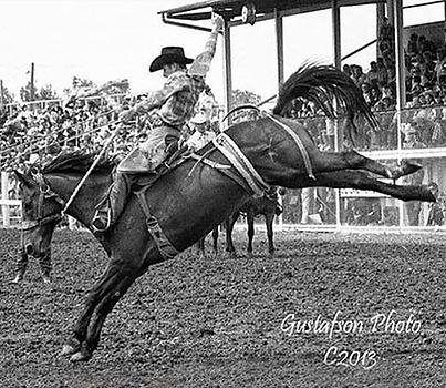 Mel Hyland - Heart of the Horse judge