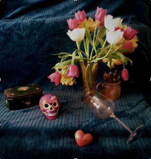 Vanessa Catalano - Still life