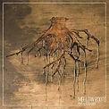 Amalgamah _Mellow Roots_(2009). Bajo, gu