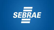 Sebrae lança guia gratuito para empresas sobre análise de dados na internet