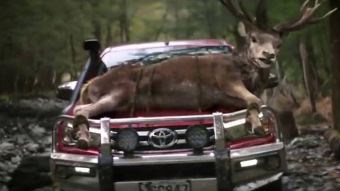 Toyota erra feio em comercial onde animais pedem para morrer