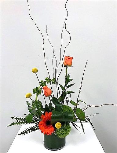 The Suncatcher arrangement