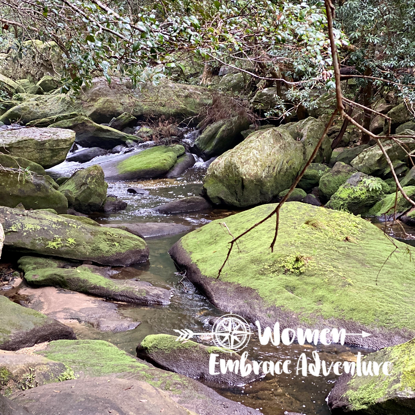 Women Embrace Hiking -  Mt Kuring-Gai to Berowra