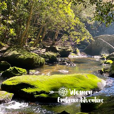 Hiking Berowra to Mt Kuring-Gai via Lyrebird Gully Women Embrace Adventure