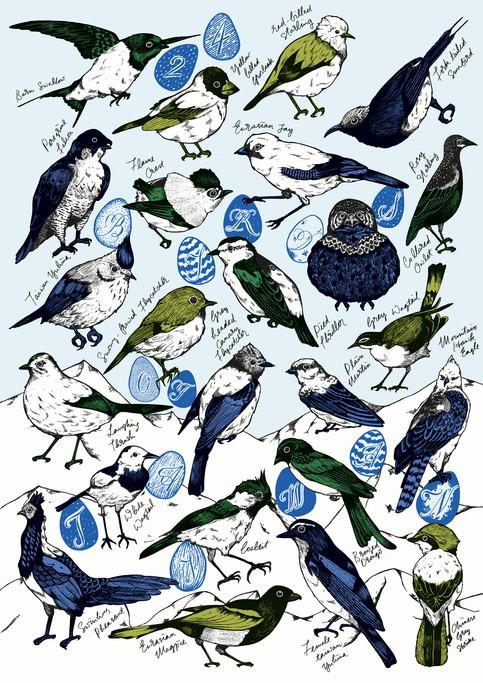24 Birds of Taiwan