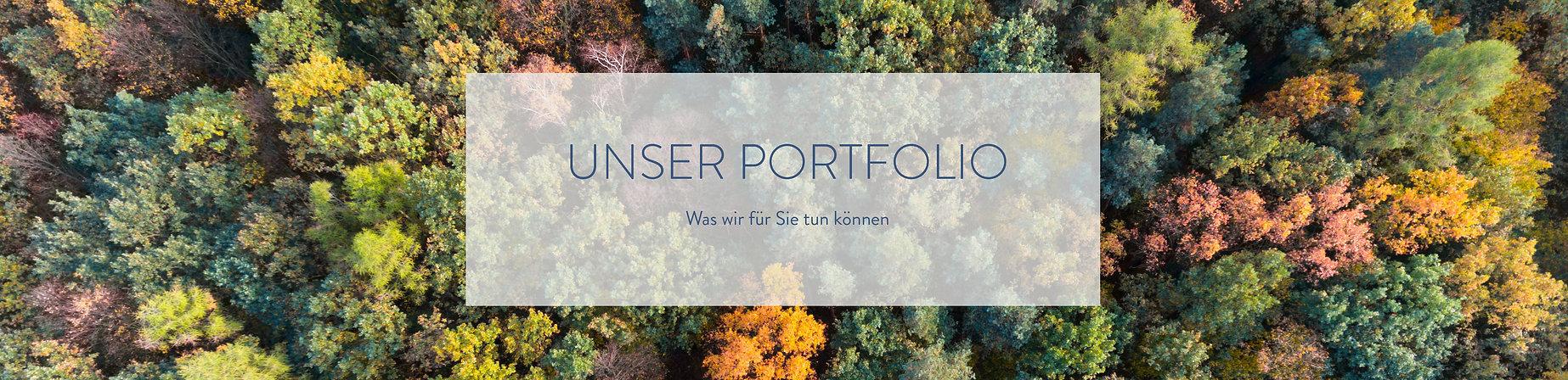 Portfolio_Rahmen_weiß_blaue_Schrift.jpg