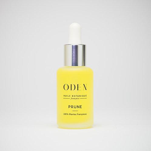 Plum Oil - Noramal/Dry skin