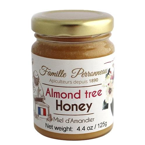 Almond Tree - Honey
