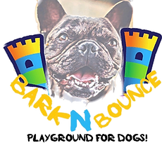 barknbounce_edited.png
