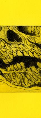 fluo skull 3.jpg