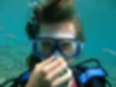 diving-496847_1280.jpg