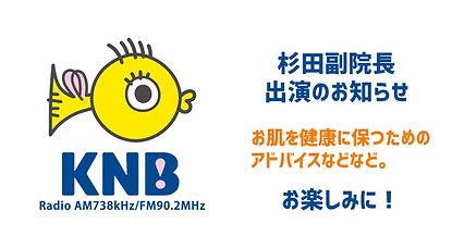 logo sekihifuka-10.jpg