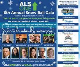 snowball gala.jpg