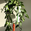 Thumbnail: Triple planter