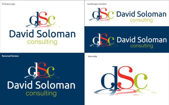 David Soloman Business Cards
