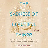 The Sadness of Beautiful Things.jpg