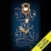 The Stars We Steal.jpg