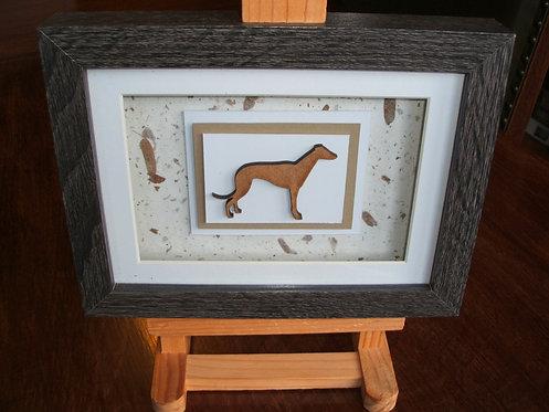Dark Oak Box Frame Greyhound Picture