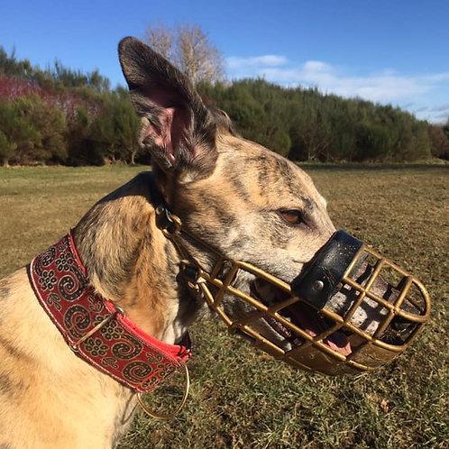 Greyhound Muzzle