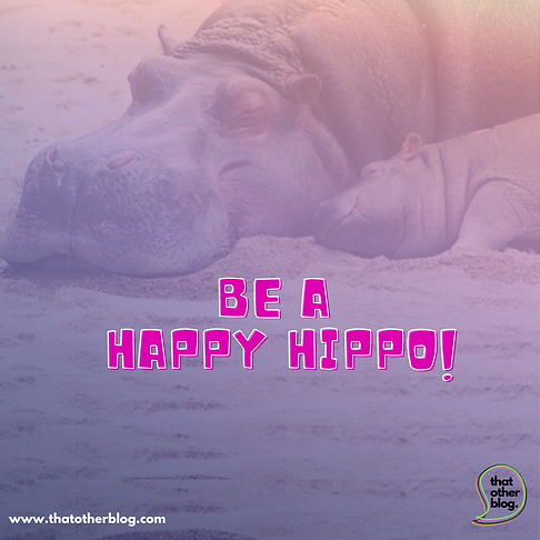 be a happy hippo!.png