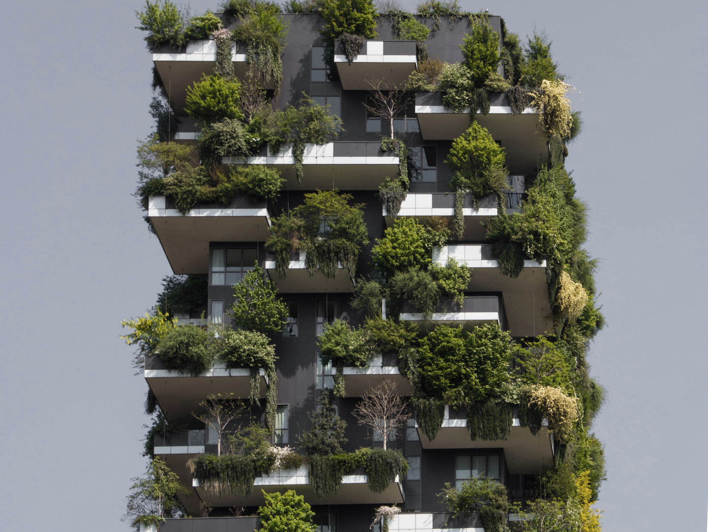 Green terraces of an ecological building