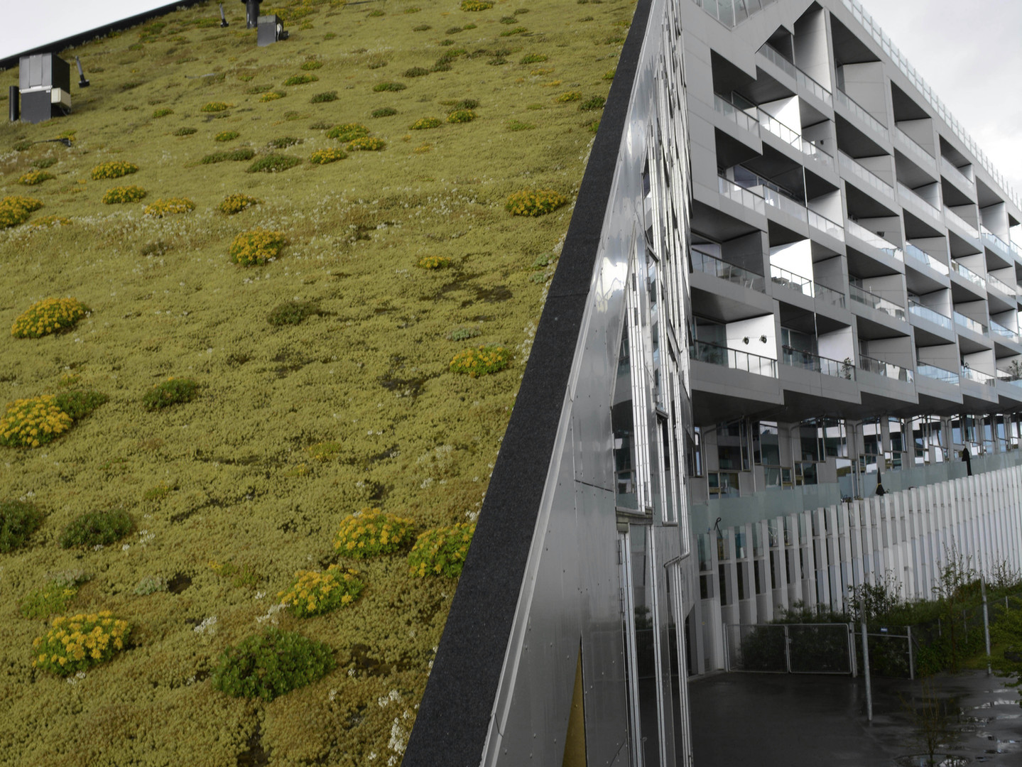 Side view of a buildings' vertical garden and front entrance