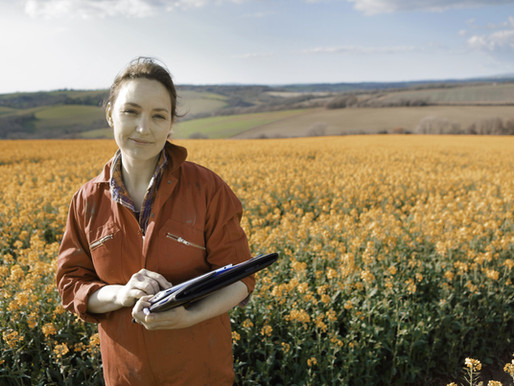 Food production steps up to meet global demand.
