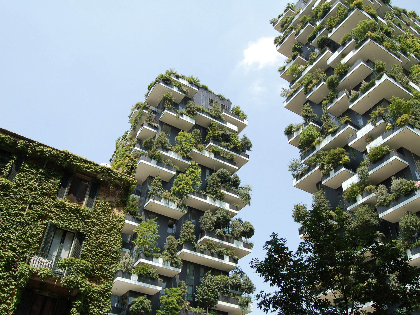 Two residential buildings with lots of plants