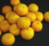 黄柚子.jpg
