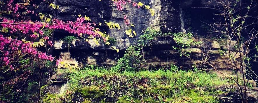 cliffside.jpg