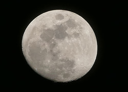 March Spring Moon 13