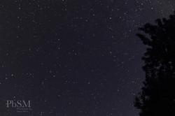 September Stars 1